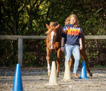 Pferdegestütztes Coaching - Ziele